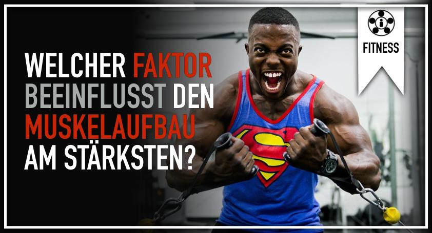 Welcher Faktor beeinflusst den Muskelaufbau am stärksten?